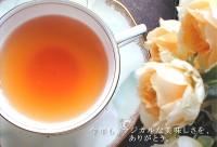 紅茶 ダージリン セカンドフラッシュ キャッスルトン茶園