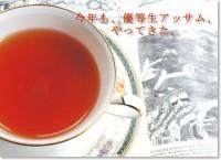 紅茶 アッサム セカンドフラッシュ ハリシュパー茶園