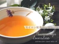 紅茶 セイロン ヌワラエリヤ・ラバーズリープ茶園