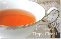 紅茶 ダージリン セカンドフラッシュ サーボ茶園